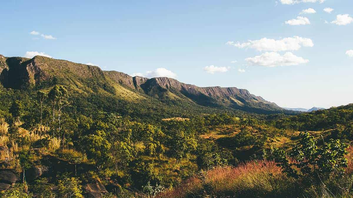 Paisagem de montanhas e vegetação