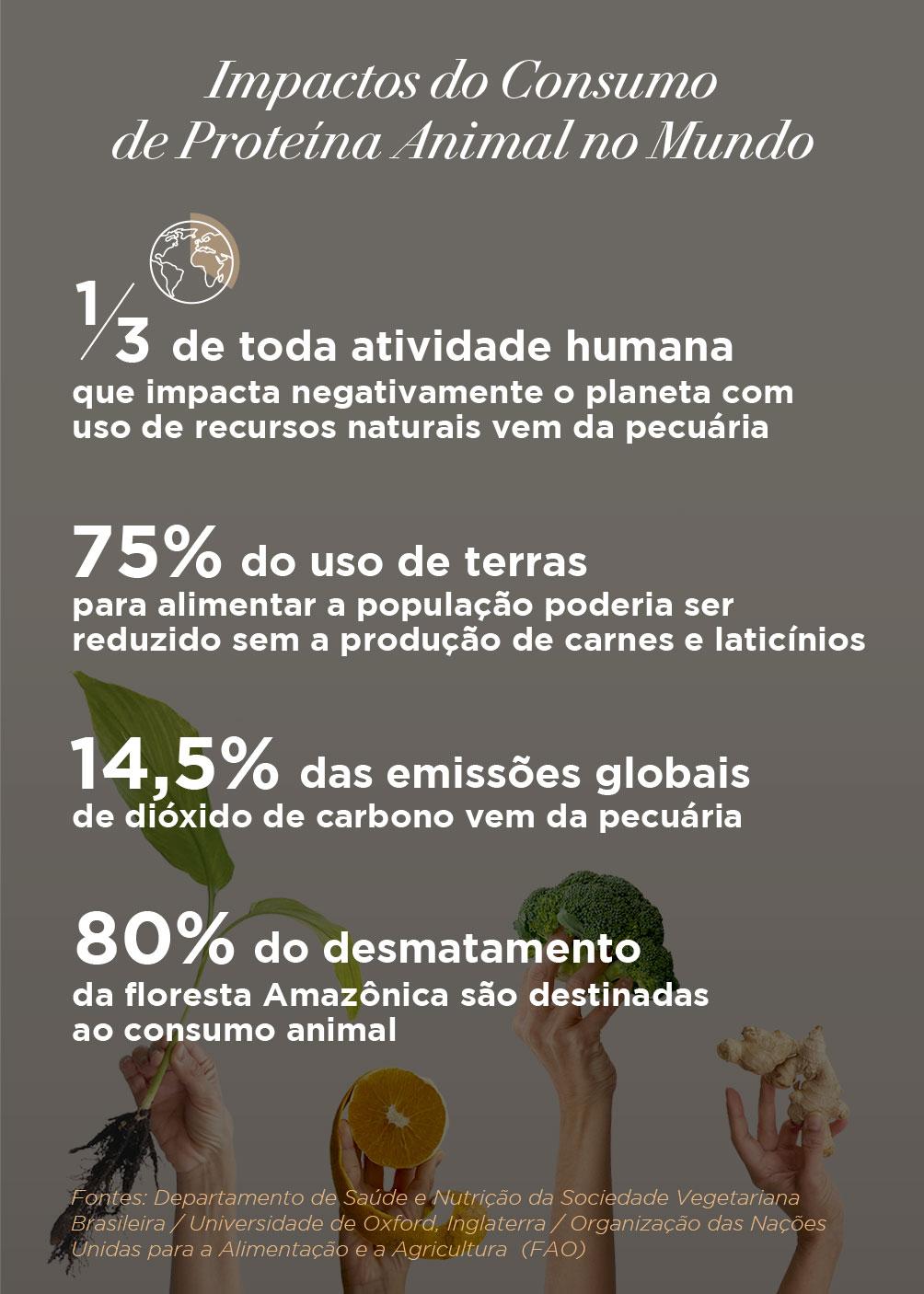Infográfico com os Impactos do Consumo de Proteína Animal no Mundo
