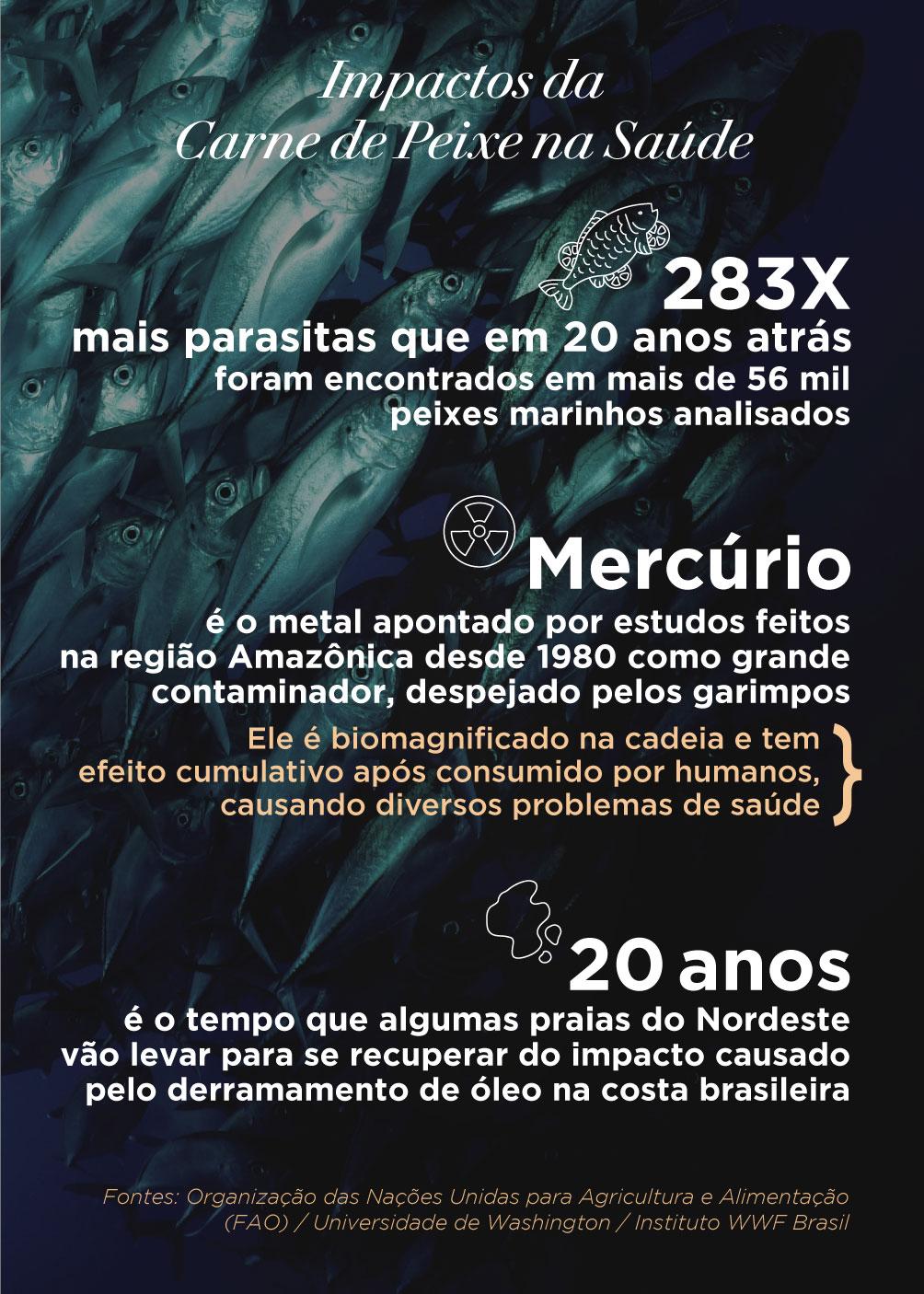 Infográfico com os impactos da Carne de Peixe Aqui e no Mundo