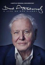 Cartaz do documentário David Attenborough e Nosso Planeta (2020)
