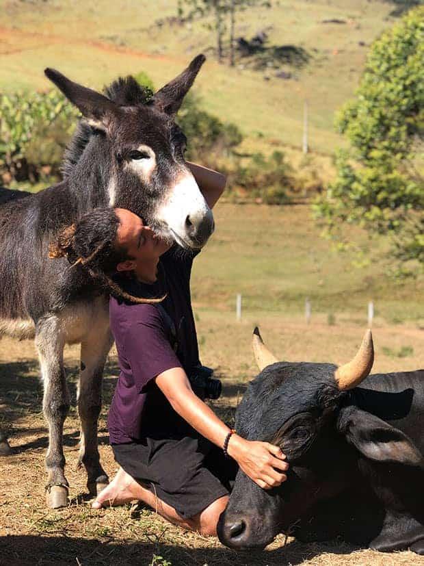 Menino faz carinho em animais resgatados, no Santuário de Animais Vale da Rainha
