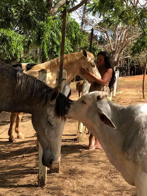 Patricia Favano faz carinho em cavao, no Santuário de Animais Vale da Rainha
