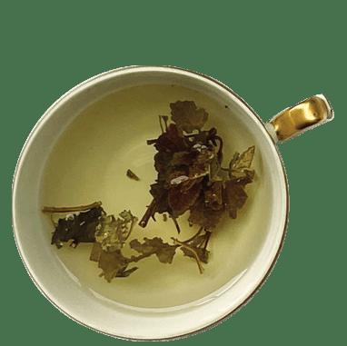xícara de chá de melissa